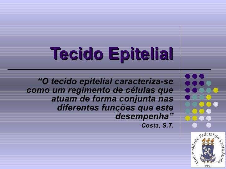 """Tecido Epitelial <ul><li>"""" O tecido epitelial caracteriza-se como um regimento de células que atuam de forma conjunta nas ..."""