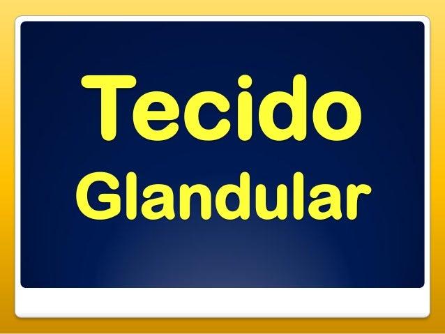 TecidoGlandular