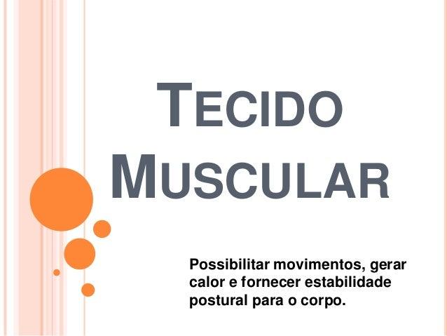 TECIDO MUSCULAR Possibilitar movimentos, gerar calor e fornecer estabilidade postural para o corpo.