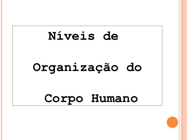 Níveis de  Organização do Corpo Humano