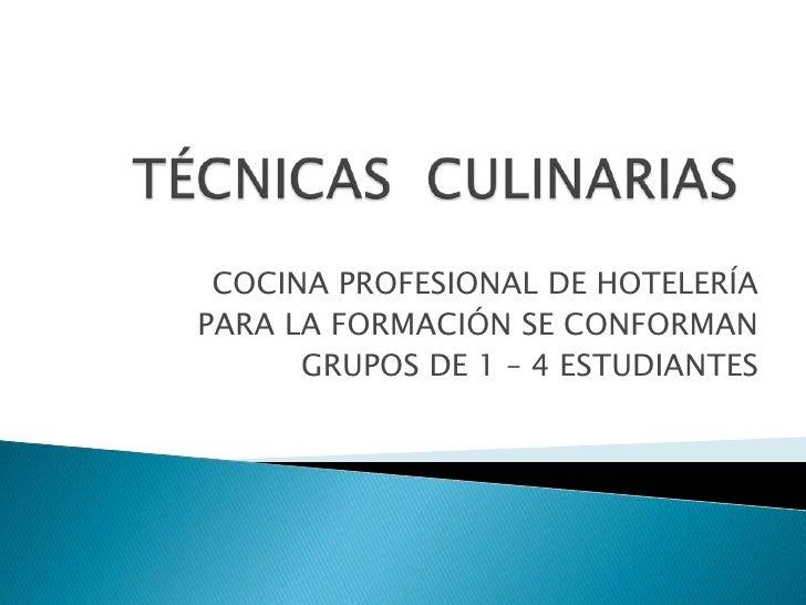 Tecnicas culinarias actualizacion for Tecnicas basicas culinarias