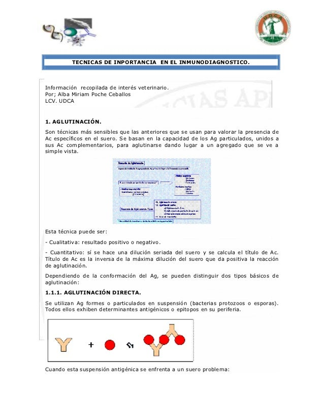 TECNICAS DE INPORTANCIA EN EL INMUNODIAGNOSTICO.Información recopilada de interés veterinario.Por; Alba Miriam Poche Cebal...