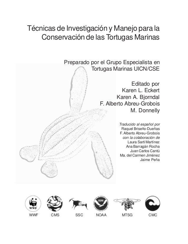 Tecnicas de investigacion y manejo para la conservación de las tortugas marinas