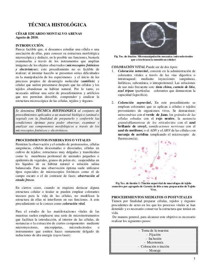 Tecnicas histologicas 2