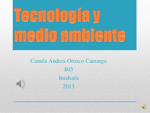 Camila Andrea Orozco Camargo803Inedsafa2013