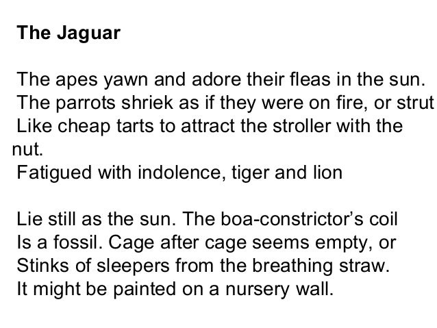 the jaguar ted hughes commentary Wodwo, hughes's fourth collection, was published in 1967  as in 'second  glance at a jaguar', where the jaguar, in dialogue with 'the jaguar' of the hawk  in.