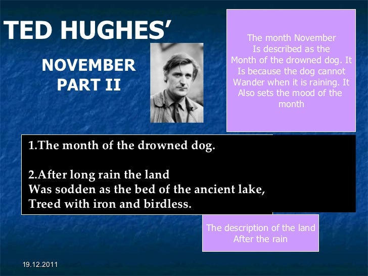 TED HUGHES'   NOVEMBER PART II 1.The month of the drowned dog.  2.After long rain the land Was sodden as the bed of the an...