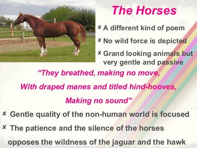 ted hughes the horses essay Luz solar é fonte de energia limpa para irrigação no vale do jaguaribe acostumado ao trabalho sob sol forte, o agricultor cearense desenvolve estratégias para se.