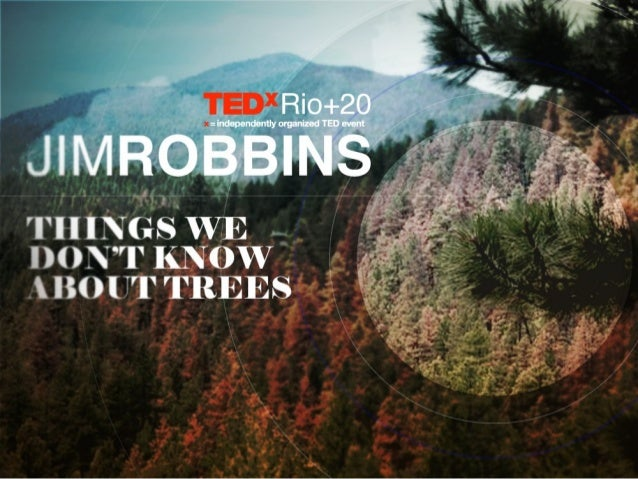 TEDxRio+20 - Jim Robbins - Things we don't know about trees
