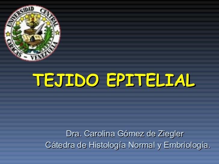 TEJIDO EPITELIAL Dra. Carolina Gómez de Ziegler Cátedra de Histología Normal y Embriología.