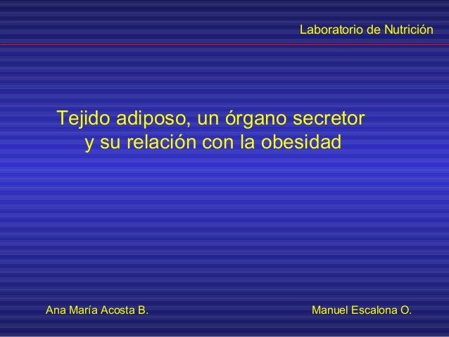 Laboratorio de Nutrición Tejido adiposo, un órgano secretor    y su relación con la obesidadAna María Acosta B.          M...