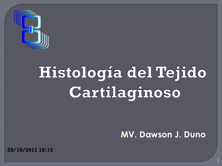    MV. Dawson J. Duno20/10/2011 10:15                                            1
