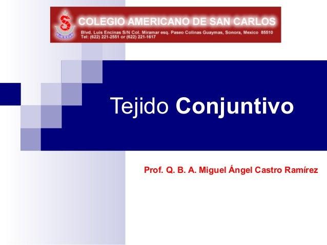 Tejido Conjuntivo   Prof. Q. B. A. Miguel Ángel Castro Ramírez