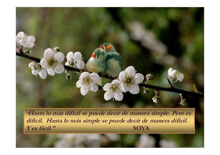 """""""Hasta   lo más difícil se puede decir de manera simple. Pero esdifícil. Hasta lo más simple se puede decir de manera difí..."""
