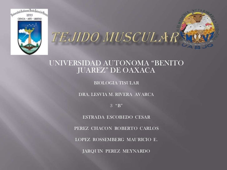 "UNIVERSIDAD AUTONOMA ""BENITO      JUAREZ"" DE OAXACA           BIOLOGIA TISULAR      DRA. LESVIA M. RIVERA AVARCA          ..."