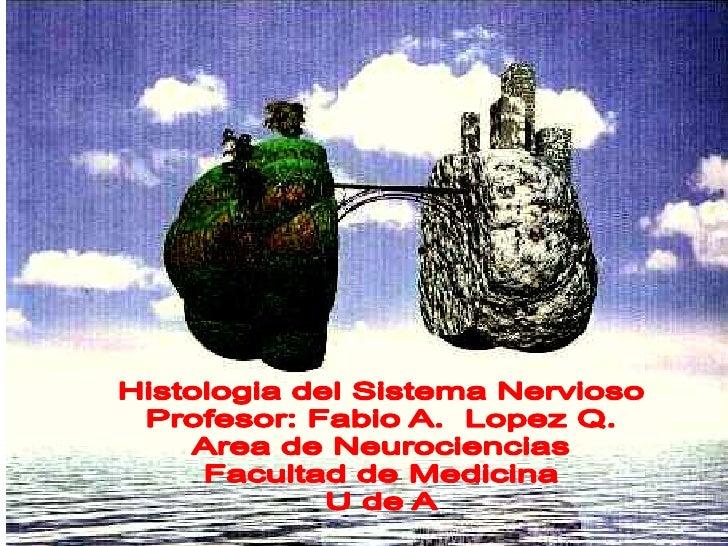 Sistema Nervioso Introducción     Es la base de la conciencia, de los  sentimientos, emociones, pensamientos,   logros y a...