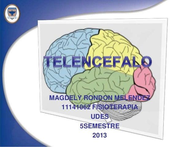 MAGDELY RONDON MELENDEZ  11141062 FISIOTERAPIA          UDES       5SEMESTRE           2013