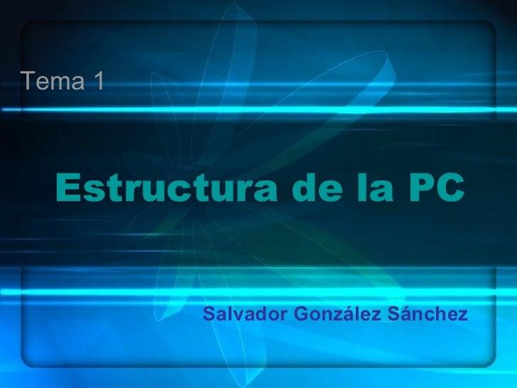 Estructura de la PC  Salvador González Sánchez Tema 1