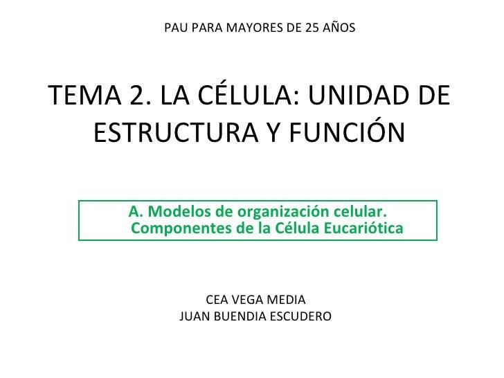 TEMA 2. LA CÉLULA: UNIDAD DE ESTRUCTURA Y FUNCIÓN A. Modelos de organización celular. Componentes de la Célula Eucariótica...