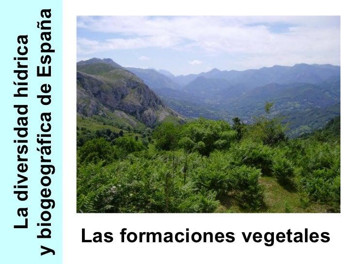 La diversidad hídrica y biogeográfica de España Las formaciones vegetales