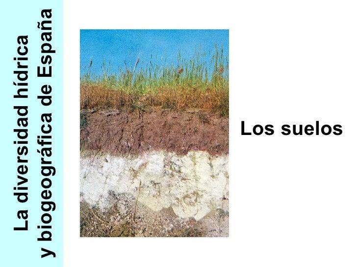 La diversidad hídrica y biogeográfica de España Los suelos