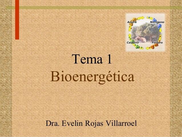 Tema 1 BioenergéticaDra. Evelin Rojas Villarroel