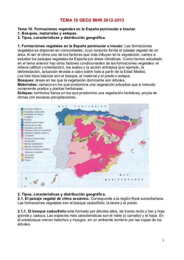 Formaciones vegetales en la España peninsular e insular