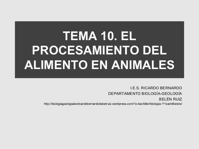 Tema 10 nutrición animal 1