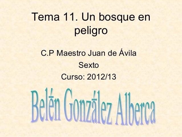 Tema 11. Un bosque enpeligroC.P Maestro Juan de ÁvilaSextoCurso: 2012/13