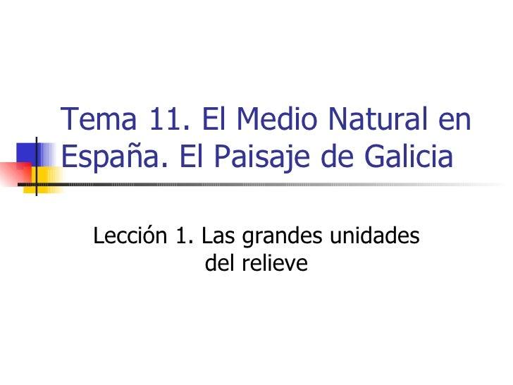 Tema 11. el medio natural en españa. el paisaje en galicia