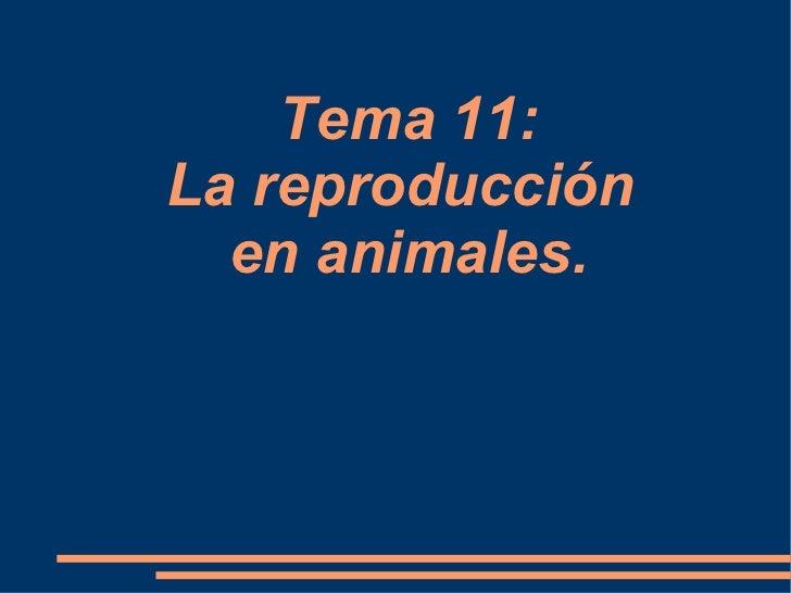 Tema 11:La reproducción  en animales.
