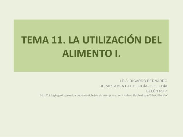 TEMA 11. LA UTILIZACIÓN DEL       ALIMENTO I.                                                           I.E.S. RICARDO BER...