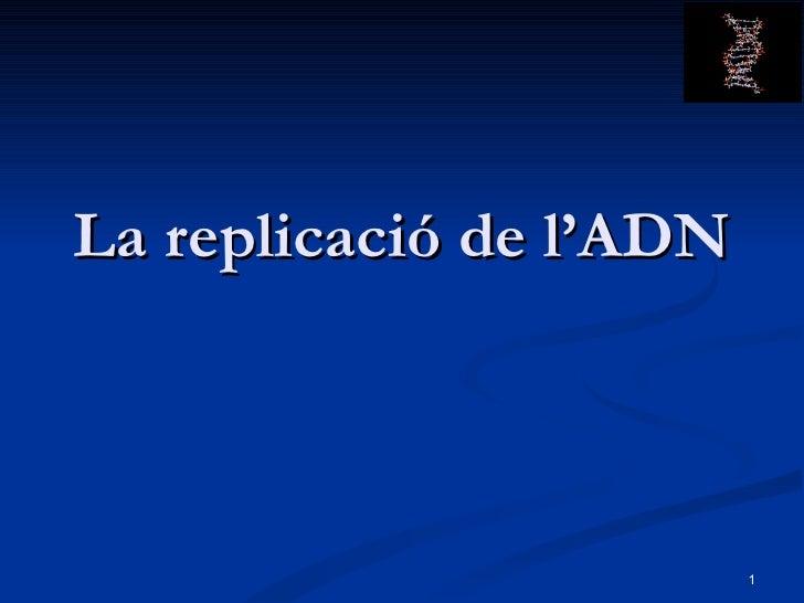 Tema11 GenèTica Molecular Ii (Replicació) 2009 10