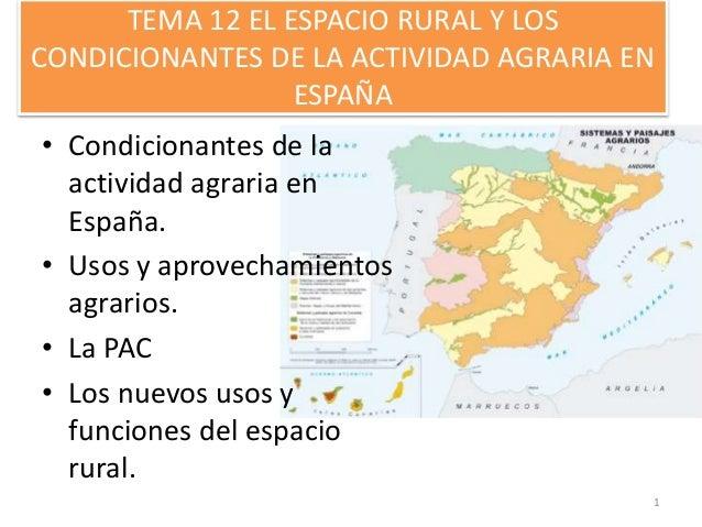 TEMA 12 EL ESPACIO RURAL Y LOS CONDICIONANTES DE LA ACTIVIDAD AGRARIA EN ESPAÑA • Condicionantes de la actividad agraria e...