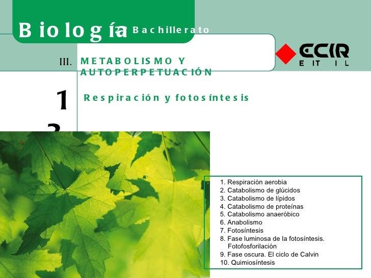 METABOLISMO Y AUTOPERPETUACIÓN III. 13 Respiración y fotosíntesis Biología 2º Bachillerato 1. Respiración aerobia 2. Catab...