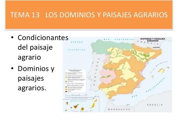 TEMA 13 LOS DOMINIOS Y PAISAJES AGRARIOS • Condicionantes del paisaje agrario • Dominios y paisajes agrarios.