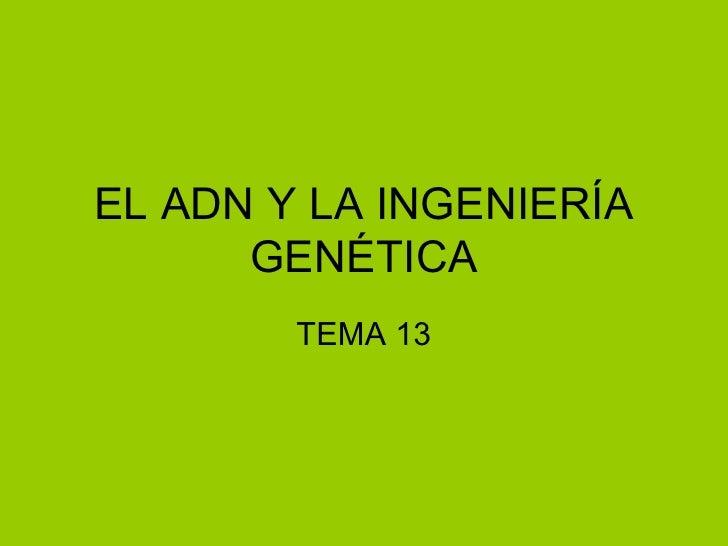 EL ADN Y LA INGENIERÍA      GENÉTICA        TEMA 13
