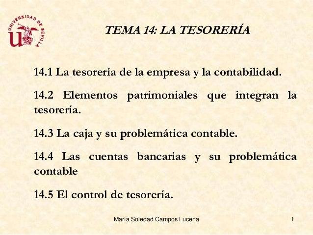 TEMA 14: LA TESORERÍA14.1 La tesorería de la empresa y la contabilidad.14.2 Elementos patrimoniales que integran latesorer...