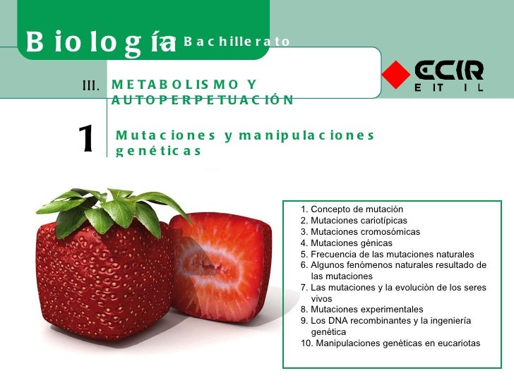 METABOLISMO Y AUTOPERPETUACIÓN III. 16 Mutaciones y manipulaciones genéticas Biología 2º Bachillerato 1. Concepto de mutac...