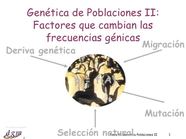 Tema 18: Genética Poblaciones II Genética de Poblaciones II: Factores que cambian las frecuencias génicas p = f(A) Deriva ...