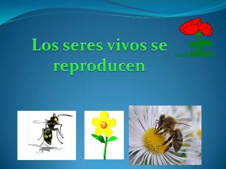 Los seres vivos se reproducen<br />