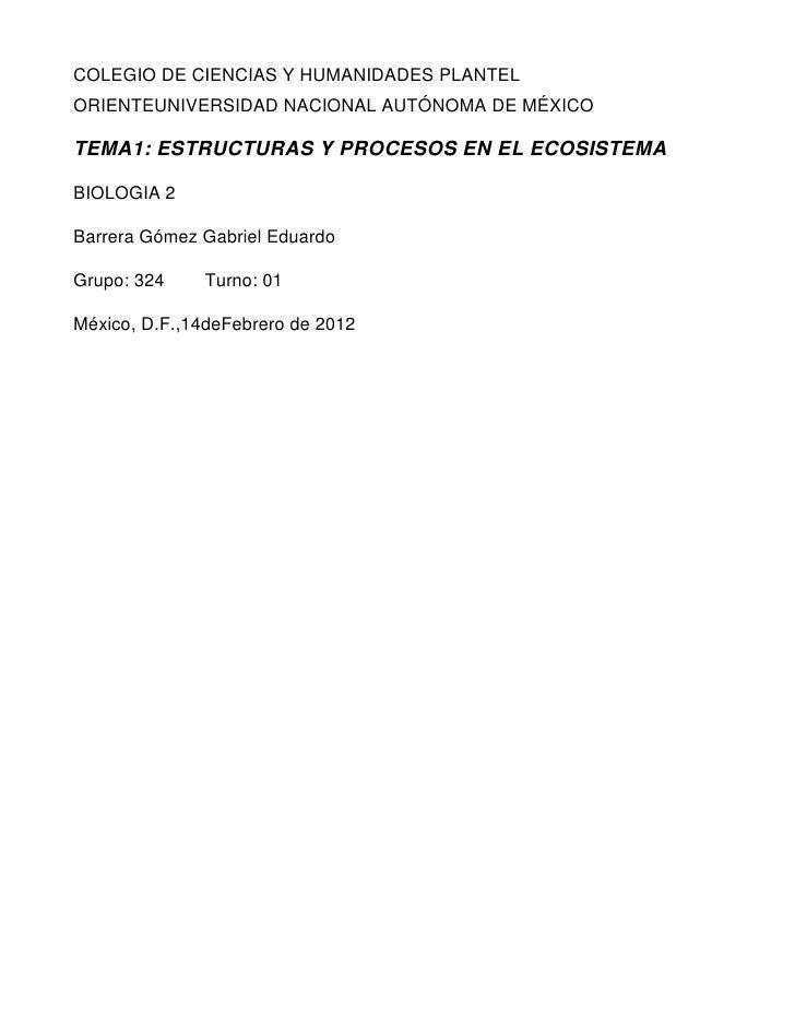COLEGIO DE CIENCIAS Y HUMANIDADES PLANTELORIENTEUNIVERSIDAD NACIONAL AUTÓNOMA DE MÉXICOTEMA1: ESTRUCTURAS Y PROCESOS EN EL...