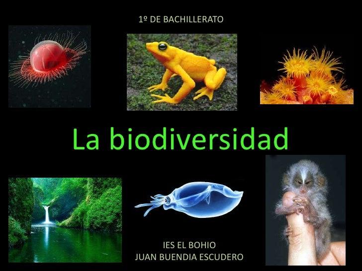 1º DE BACHILLERATO<br />La biodiversidad<br />IES EL BOHIO<br />JUAN BUENDIA ESCUDERO<br />