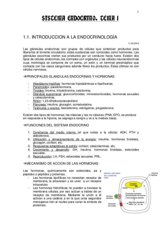 1              SISTEMA ENDOCRINO. TEMA 11.1. INTRODUCCION A LA ENDOCRINOLOGÍA                                             ...