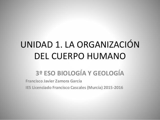 UNIDAD 1. LA ORGANIZACIÓN DEL CUERPO HUMANO 3º ESO BIOLOGÍA Y GEOLOGÍA Francisco Javier Zamora García IES Licenciado Franc...