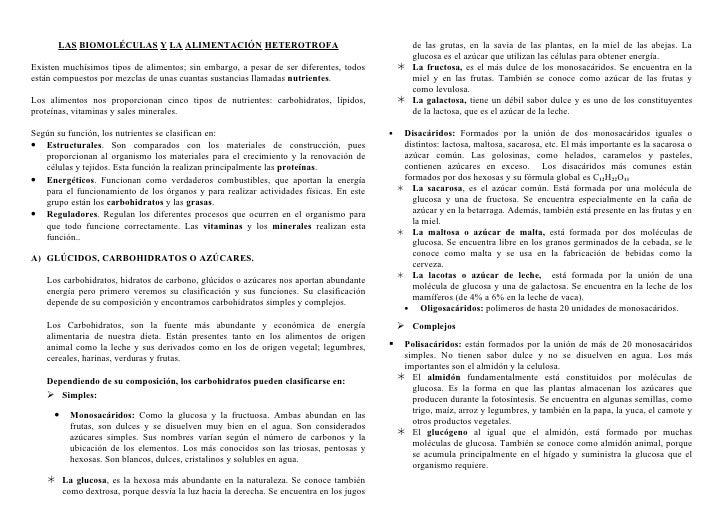 Tema 1 las_biomoléculas_y_la_alimentación