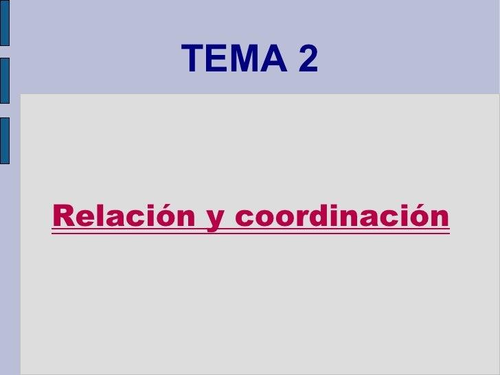 TEMA 2 Relación y coordinación