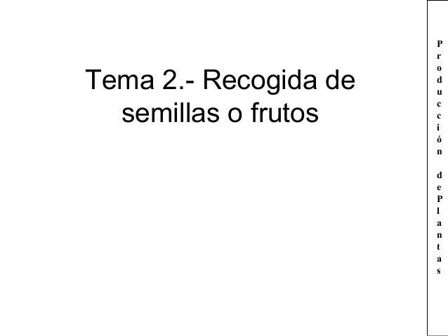 Tema 2.- Recogida de semillas o frutos  P r o d u c c i ó n d e P l a n t a s
