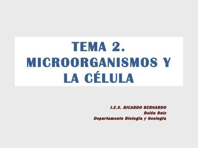 TEMA 2.MICROORGANISMOS Y    LA CÉLULA              I.E.S. RICARDO BERNARDO                             Belén Ruiz       De...