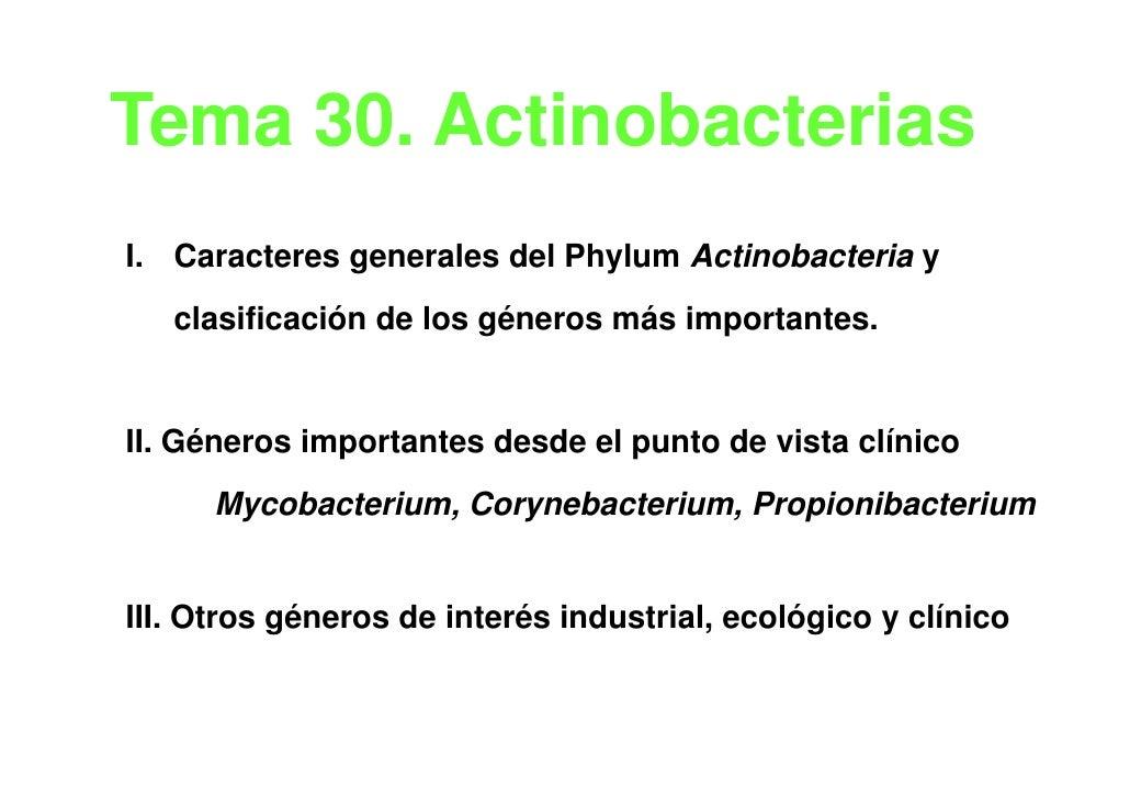 Tema 30 Actinobacterias     30.I. Caracteres generales del Phylum Actinobacteria y   clasificación de los géneros más impo...